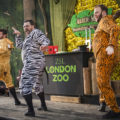 The Dream Bears at Zoo Lates