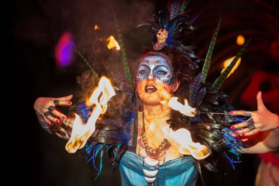 Cirque Berserk is a big top experience clearly aimed at an adult audience.