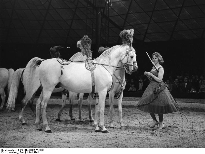 Eight Unsung Circus Facts For World Circus Day