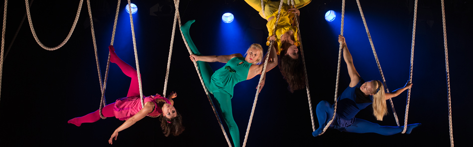Circus Treats: What's On in January