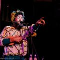 Timberlina at Suburbaret, February 2015. Image: Paul Grace
